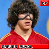 spain euro 2008 free display picture